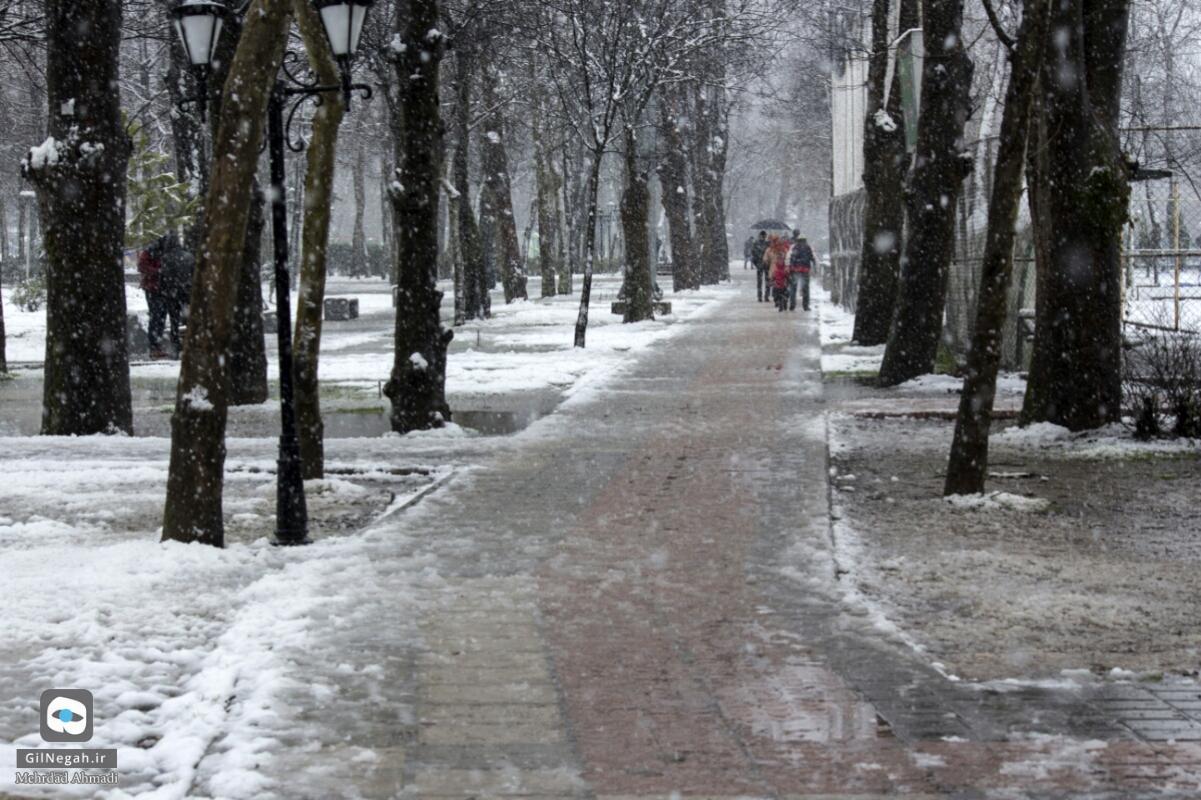 برف رشت (3)