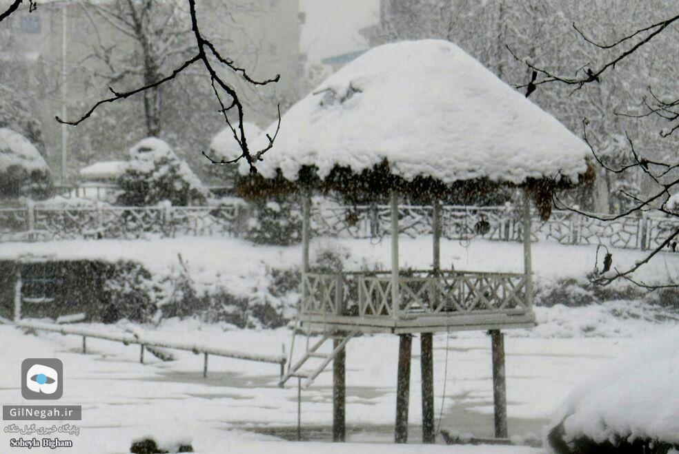 برف پارک ملت رشت (1)