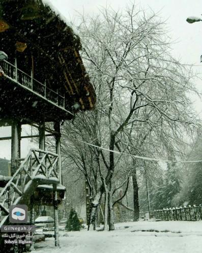 برف پارک ملت رشت (3)