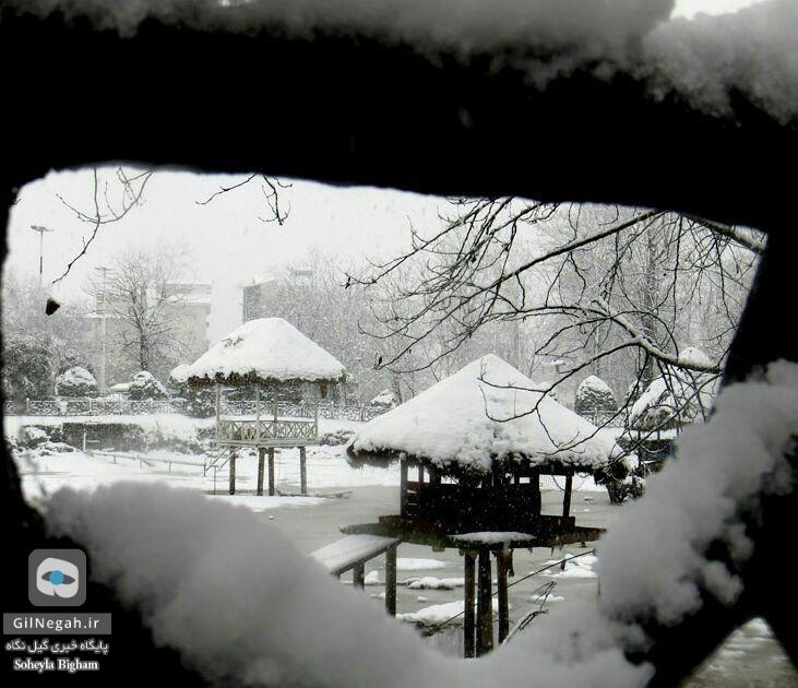 برف پارک ملت رشت (5)