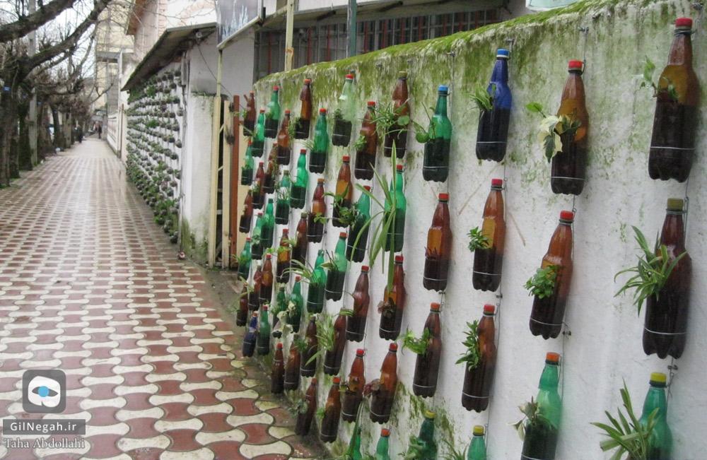 تالش دیوار سبز (5)