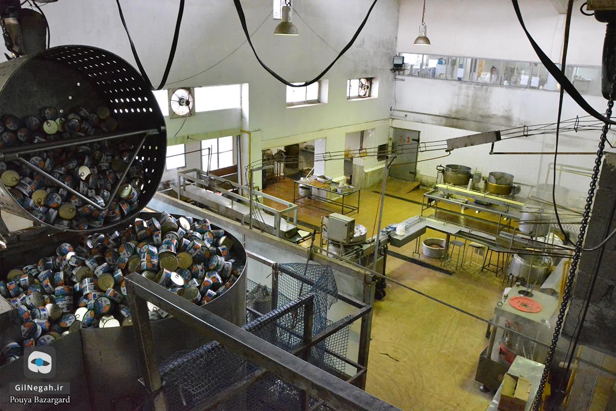 شرکت تن ماهی شیدان (11)
