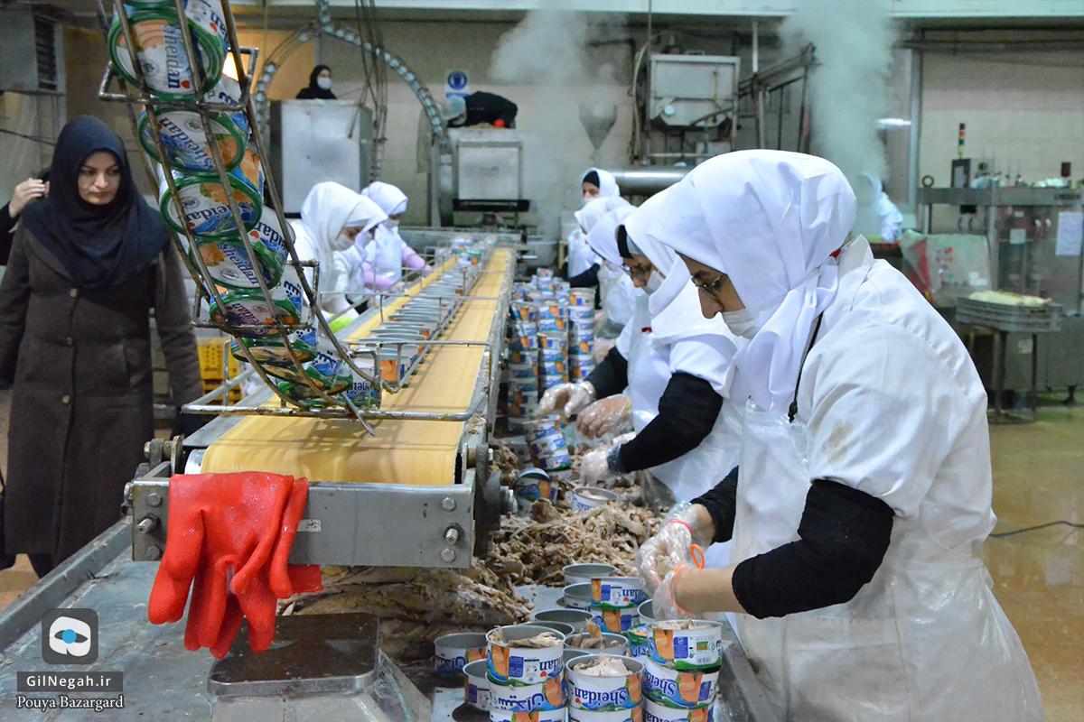 شرکت تن ماهی شیدان (7)