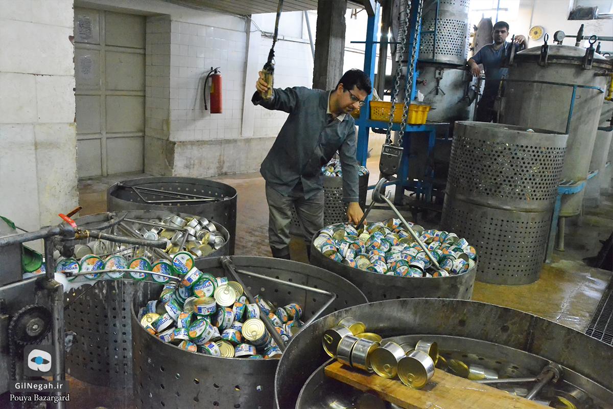 شرکت تن ماهی شیدان (9)