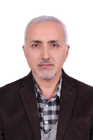 مومن-صالحی