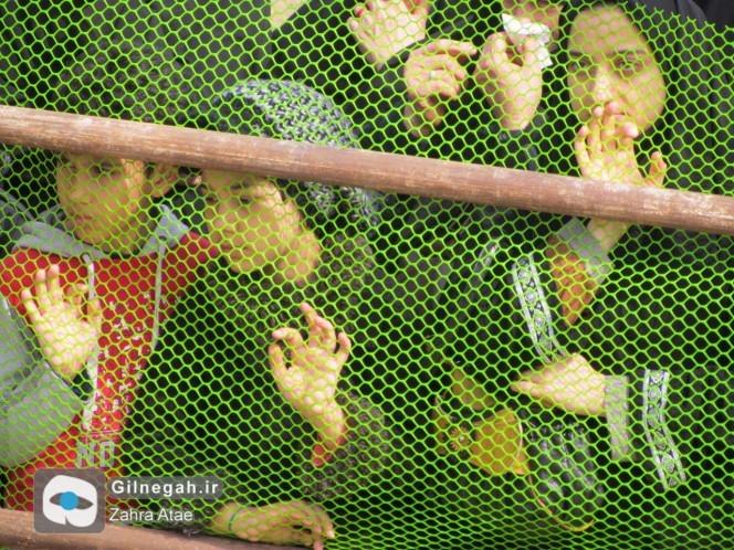 تدفین-شهید-گمنام-انزلی-20-664x498