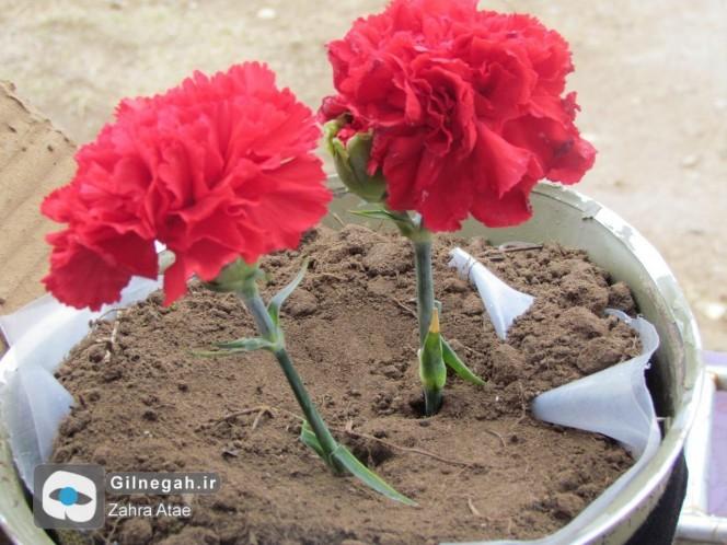 تدفین-شهید-گمنام-انزلی-21-664x498