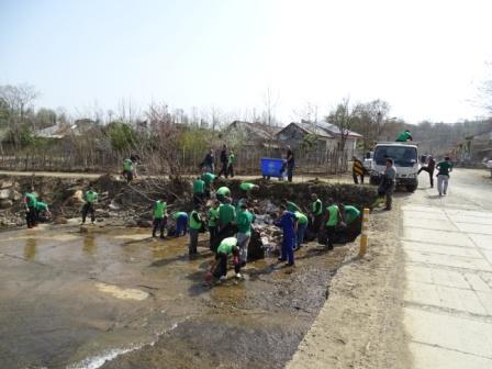 روز درختکاری شفت (4)