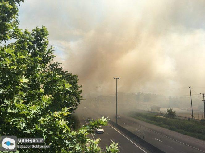 آتش سوزی جنگل جاده تهران (3)