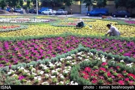 فرش گل در آستارا2