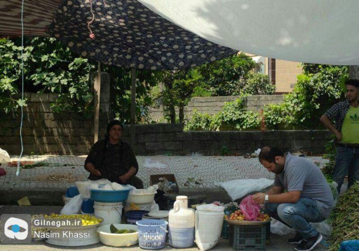 چهارشنبه بازار رضوانشهر (3)