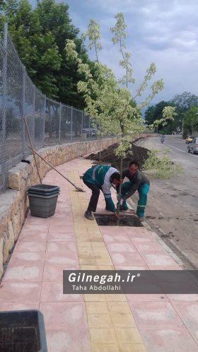 پروژه های عمرانی شهرداری تالش (5)