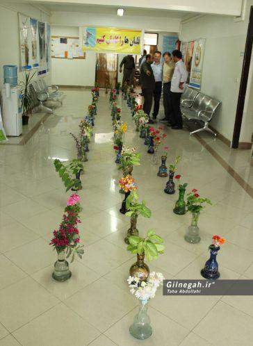 قلیان ها را گلدان کنیم (1)
