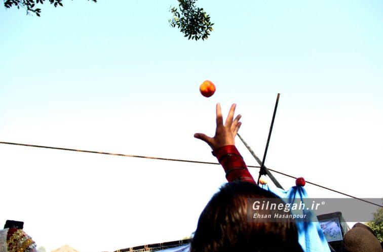 جشن شکرانه برنج سیاهکل -(13)