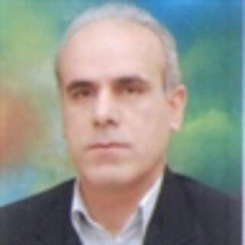 رضا بژکول
